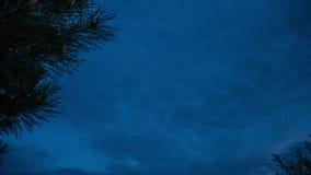 Baum und Wolken in timelapse Wolken schwimmen über den Himmel, Zeitspannesonnenuntergang, blühender Baum gegen den Himmel mit Wol stock video