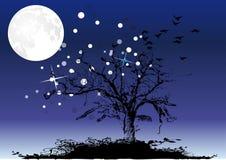 Baum unter Mond und Sternen Stockfotos