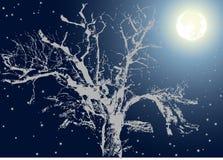 Baum unter Mondleuchte Lizenzfreie Stockbilder