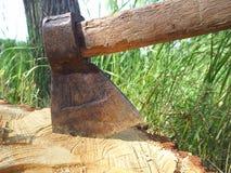 Baum-verzierte Axt stellt passendes für Handelsdesigne dar Stockfotos