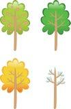 Baum. Vier Jahreszeiten Stockfoto