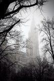 Baum vor dem Rathausgebäude Lizenzfreie Stockfotografie