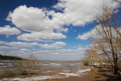 Baum, Wolken und blauer Himmel. Stockfotografie