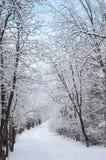 Schnee bedeckte Gehweg stockfoto