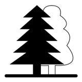 Baum zwei. Stockbild
