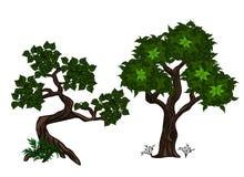 Baum zwei Lizenzfreie Abbildung
