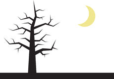 Baum-Zweige mit Mond Lizenzfreies Stockfoto