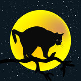 Baumast mit einer Katze im Mondhintergrund Lizenzfreie Stockfotos