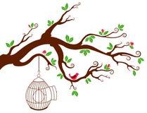 Baumast mit Vogelkäfig und schönen Vögeln Lizenzfreie Stockbilder