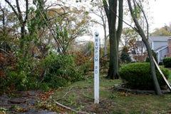 Baumaste auf niedergeworfenen Drähten nach Supersturm Sandy lizenzfreie stockbilder