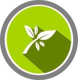 Baumbildlogo und -schablone Lizenzfreies Stockbild