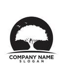 Baumblattvektor-Logodesign, umweltfreundliches Konzept Stockbild