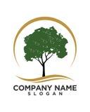 Baumblattvektor-Logodesign, umweltfreundliches Konzept Lizenzfreie Stockfotos