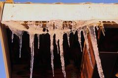 Baumelnde Eiszapfen Lizenzfreie Stockbilder