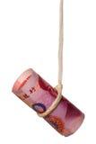 Baumelnder chinesischer Dollar Stockfotos