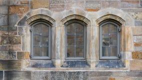 Baumfenster in Neo-gotischem Stockbilder