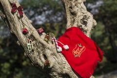 Baumgeschenkkonzept der frohen Weihnachten und des guten Rutsch ins Neue Jahr lizenzfreie stockbilder