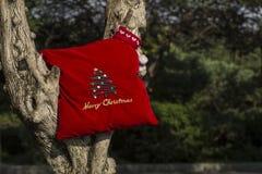 Baumgeschenkkonzept der frohen Weihnachten und des guten Rutsch ins Neue Jahr Stockbild