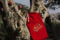 Baumgeschenkkonzept der frohen Weihnachten und des guten Rutsch ins Neue Jahr lizenzfreies stockbild
