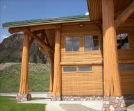 Baumkabel-Protokollstruktur eines modernen Gebäudes Lizenzfreies Stockbild