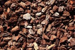 Baumkabelmuster der Barke braunes Stockbilder