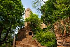 Baumlaub des Auerbach-Schlosseingangs im Frühjahr lizenzfreies stockfoto