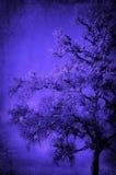 Baummuster im Blau Stockbild