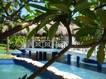 Baumpalmen Pool Haus mit einem thatched Dach Lizenzfreie Stockfotos