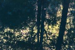 Baumreflexion im Fluss Lizenzfreie Stockfotografie