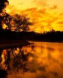 Baumreflexion im See am Sonnenuntergang Lizenzfreies Stockfoto