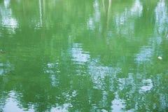 Baumreflexion im Wasser Stockbild