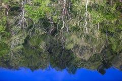 Baumreflexionen im Gebirgsgabel-Fluss, Oklahoma Lizenzfreies Stockfoto