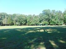 Baumreihe über einem Feld Stockfotos