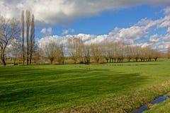 Baumreihe eine flämische Ackerlandlandschaft Lizenzfreie Stockfotos