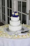 Baumreihe Hochzeits-Kuchen am Strandhaus 3 Stockfotos