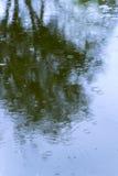 Baumschatten in den Oberflächenwellen im giftigen Wasser, Abwasser, Verschmutzung Stockbilder