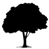 Baumschattenbild auf weißem Hintergrundvektor Lizenzfreies Stockfoto