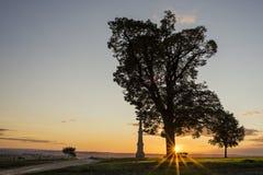 Baumschattenbild im Sonnenuntergang mit einem Wegkreuz, Tschechische Republik Olomouc Lizenzfreies Stockfoto