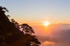 Baumschattenbilder auf Berg bei Sonnenaufgang Stockfotos