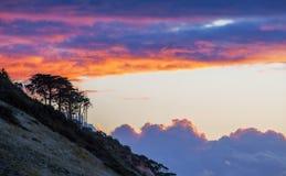 Baumschattenbilder auf einem Hügel bei goldenem Sonnenuntergang Wolkenglühen Stockfoto