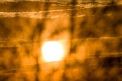 Baumschattenbilder gegen Sonnenuntergang Lizenzfreie Stockbilder