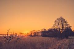 Baumschattenbilder im Sonnenaufgang Lizenzfreies Stockfoto