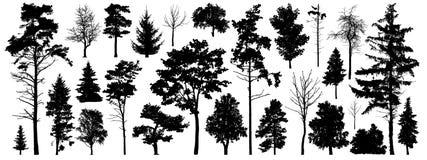 Baumschattenbildvektor Lokalisierte Bäume des Waldes auf weißem Hintergrund stock abbildung
