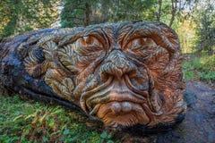Baumschnitzen eines riesigen lebensechten Kopfes Stockfoto