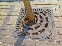Baumschutz Lizenzfreies Stockbild