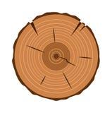 Baumstammquerschnitt, auf Weiß, Beschneidungspfad eingeschlossen Lizenzfreie Stockfotos