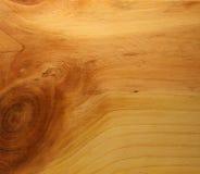Baumstruktur Lizenzfreies Stockbild