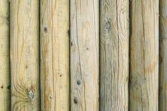 Baumstumpfbeschaffenheit Lizenzfreies Stockbild