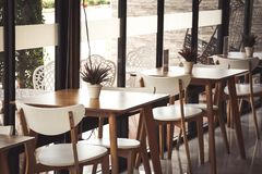 Baumtöpfe auf dem Tisch gesetzt von einer Kaffeestube Lizenzfreie Stockfotos
