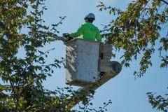Baumtrimmer im Eimer, der eine Kettensäge hält Lizenzfreies Stockfoto